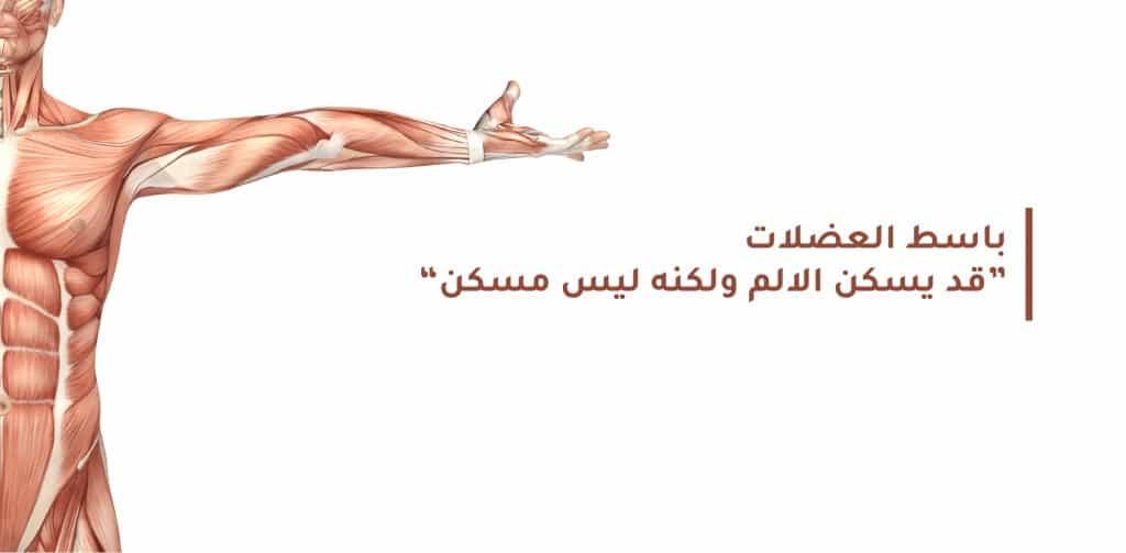 باسط العضلات